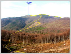 Часть маршрута к г.Острая. Вид с северного склона г.Полонина Руна
