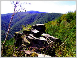 Вдали виднеется вершина горы Анталовецкая Поляна