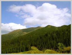 Дорога с г.Поп Иван. Юго-Западное направление
