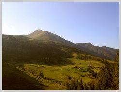 Северо-Восточные склоны  г. Поп Иван (1,936 м)