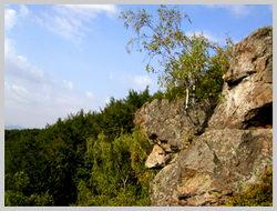 На скалах можно найти множество «фигур животных»