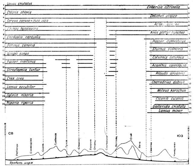 Схема проникновения равнинных